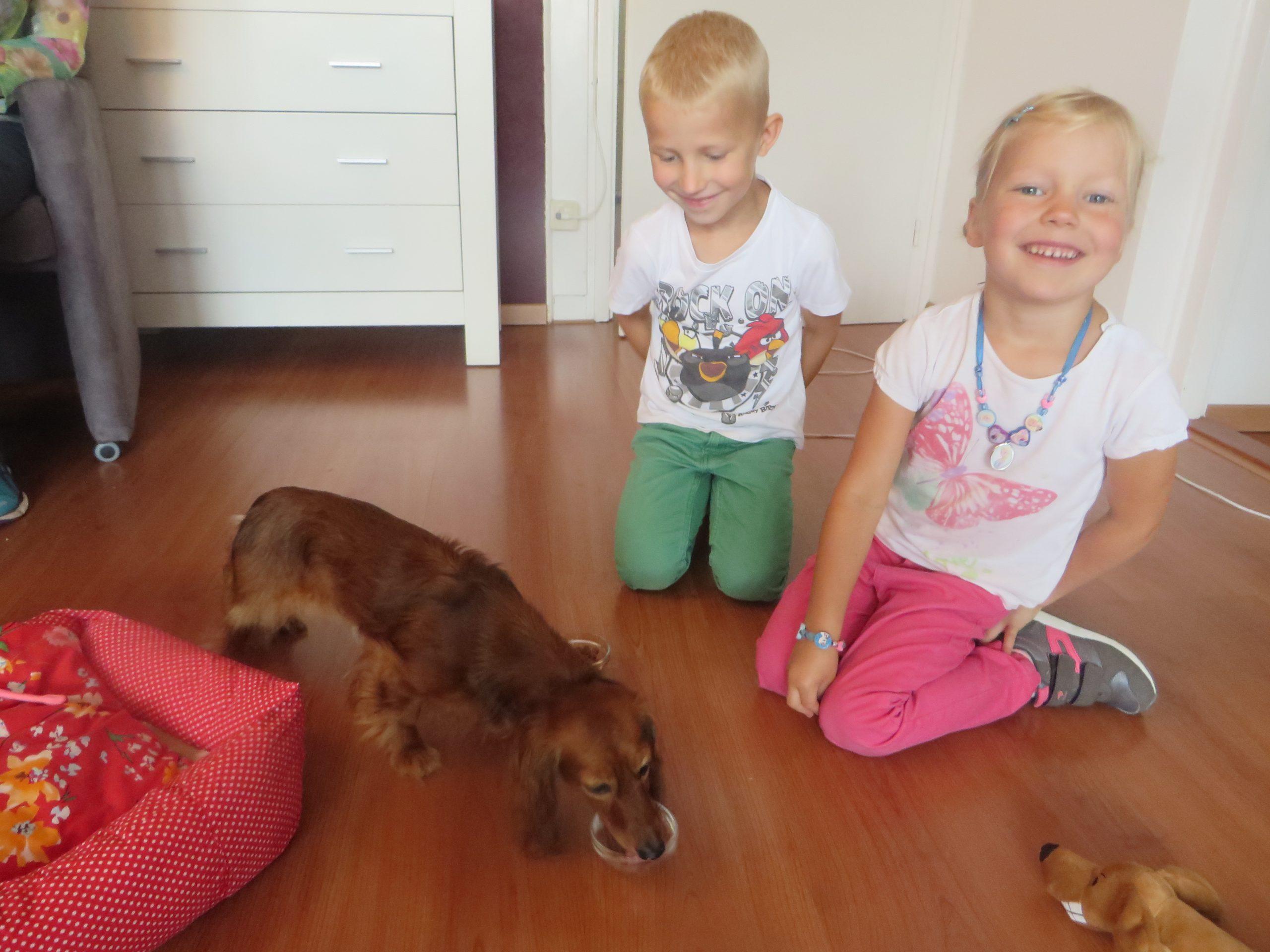 Molly eet het lekkers van 2 kinderen op haar vejaardagsfeestje